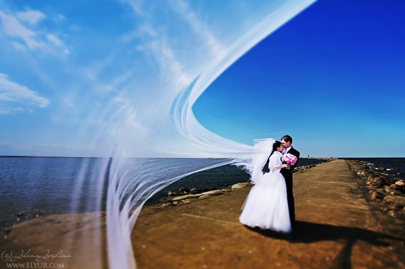 婚纱的天空  作者  Jelena Jursina
